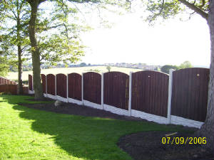 Ringwood Fencing - Garden Fencing, Wooden Panels, Paling Fencing